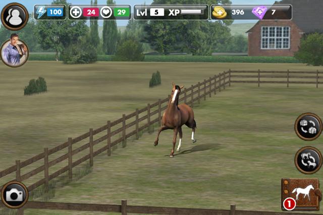 pferdespiele zum jetzt spielen