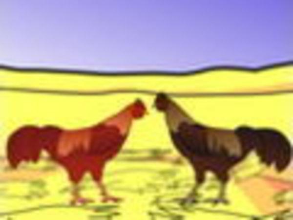 Bild zu Action-Spiel Cockfight