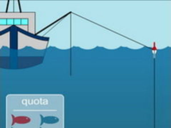 Bild zu Geschick-Spiel Fisherman