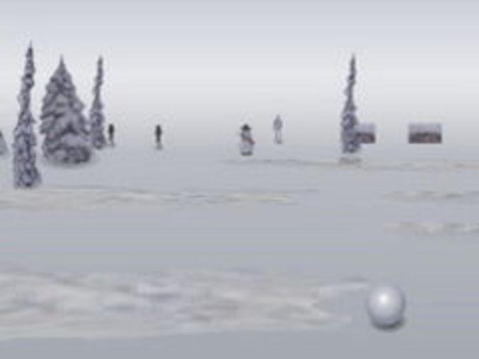 Snowball 2008