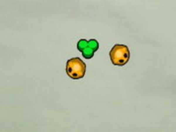 Bild zu Sport-Spiel Micro Life