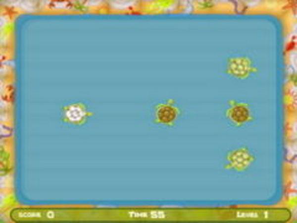 Bild zu Geschick-Spiel Turtle Pool