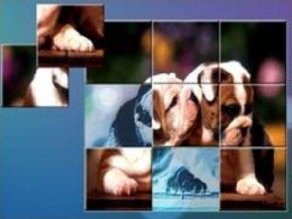 Bild zu Denken-Spiel Jigsaw Dogs