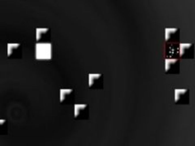 Domino Void