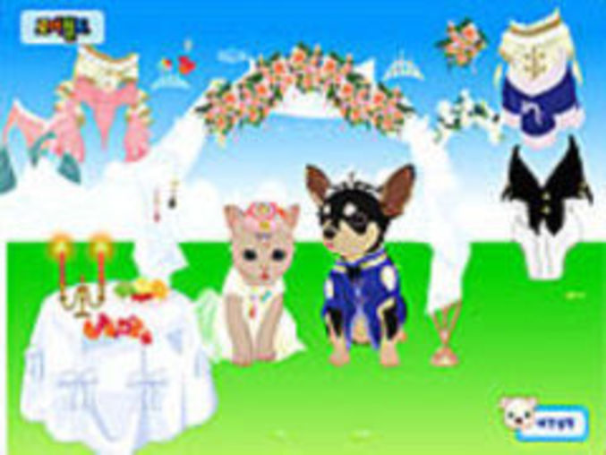 Petwedding Dressup