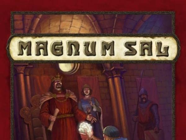 Bild zu Alle Brettspiele-Spiel Magnum Sal