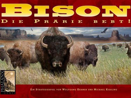 Bison: Die Prärie bebt!