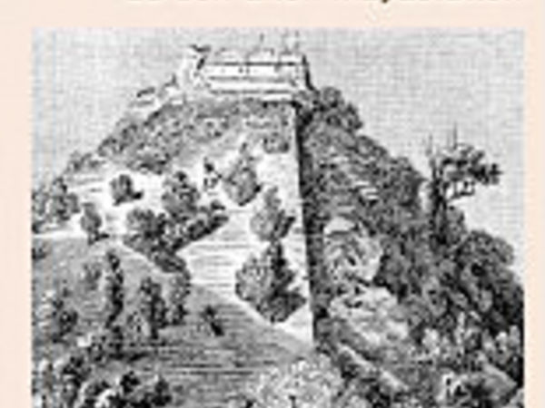 Bild zu Alle Brettspiele-Spiel Expedition zu den alten Mayastätten