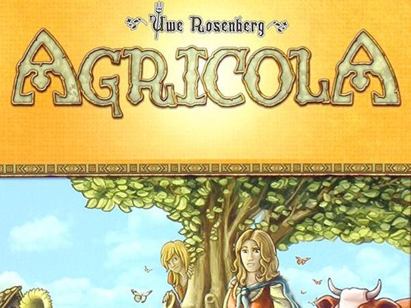 Bild zu Frühjahrs-Neuheiten-Spiel Agricola - Familienspiel
