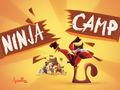 Vorschaubild zu Spiel Ninja Camp