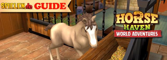 horse haven tipps und tricks