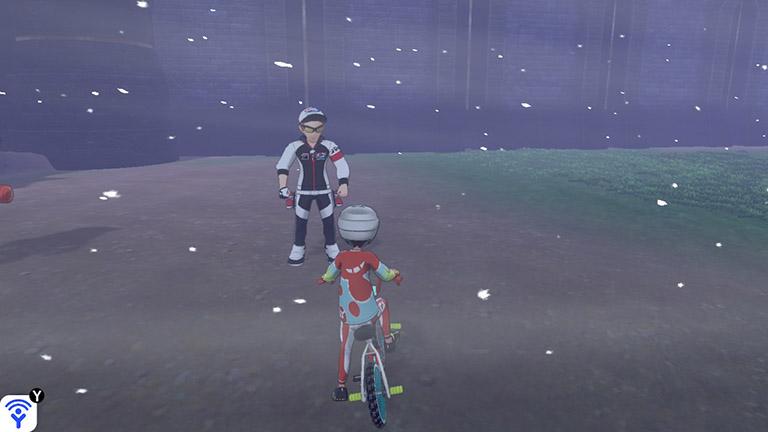Pokémon Schwert und Schild Watt-Händler
