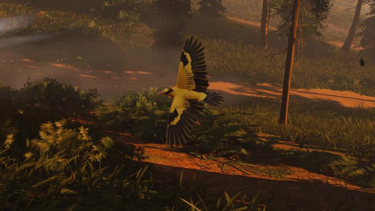 Ghost of Tsushima - goldener Vogel