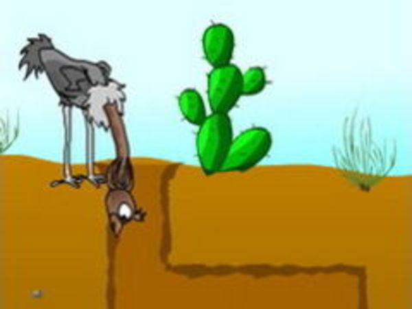 Bild zu Denken-Spiel Ostrich Underground
