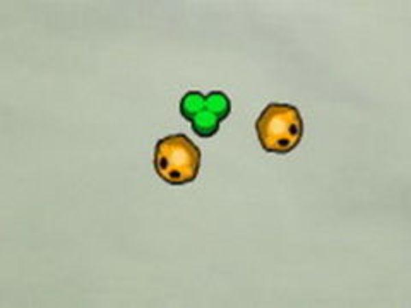 Bild zu Rennen-Spiel Micro Life