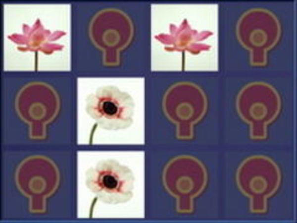 Bild zu Denken-Spiel Memo Bilder