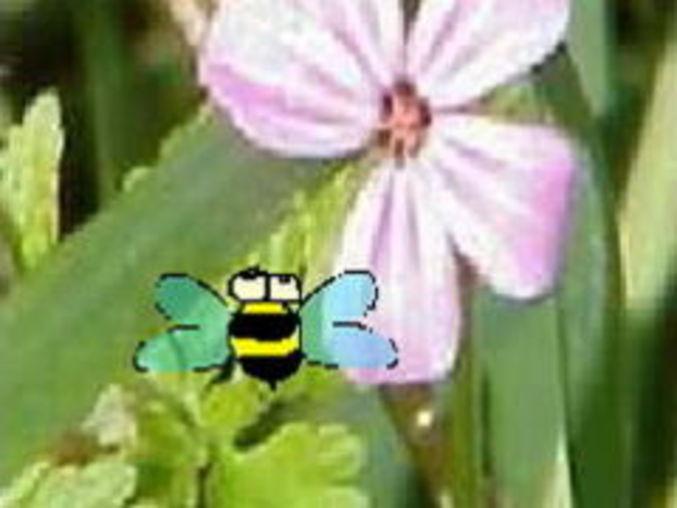Bibi die Biene