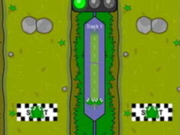 Bild zu Rennen-Spiel Frograce