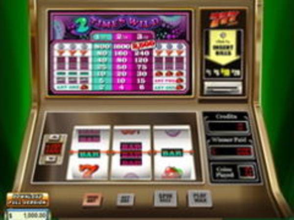 Bild zu Casino-Spiel 2 Times Wild
