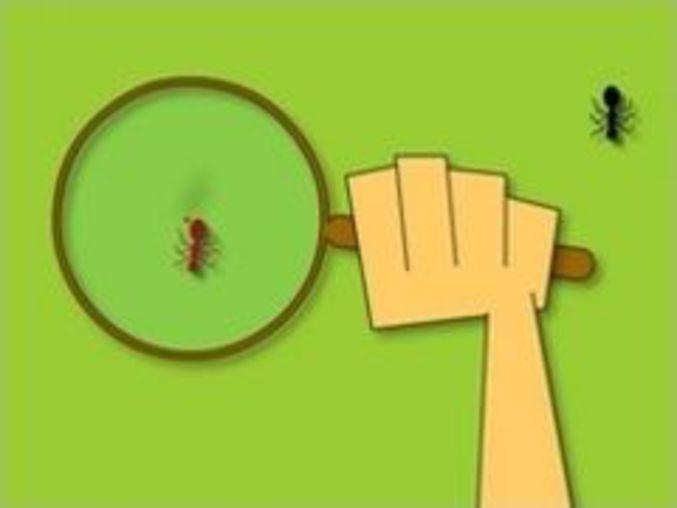 Ants Invasion 2