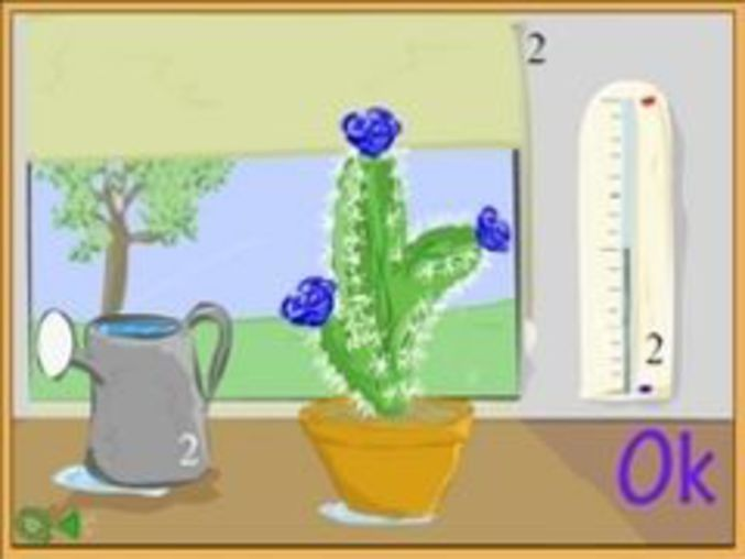 Zen-Pflanzen