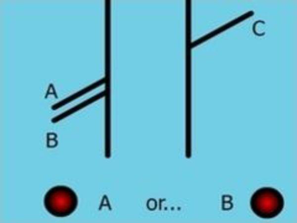 Bild zu Denken-Spiel Illusion
