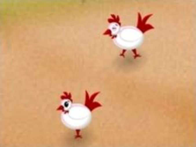 Hen Cock