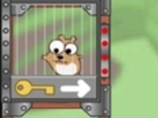 Bild zu Mädchen-Spiel Harry the Hamster