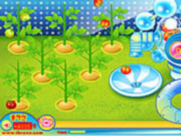Bild zu Kinder-Spiel Sue Tomato Factory