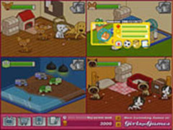 Bild zu Simulation-Spiel Animal Shelter