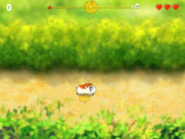 Bild zu Geschick-Spiel Make it Home