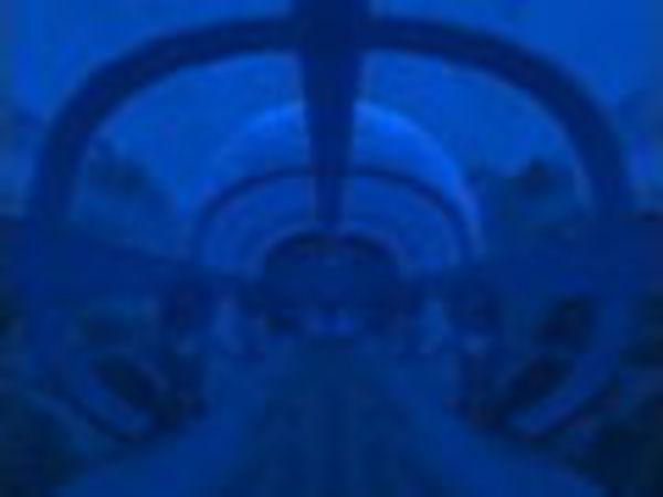 Bild zu Denken-Spiel Aquaria