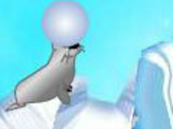 Bild zu Geschick-Spiel Sealball