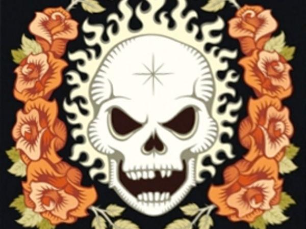 Bild zu Alle Brettspiele-Spiel Skull & Roses