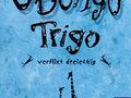 Ubongo Trigo: Mitbringspiel Bild 1