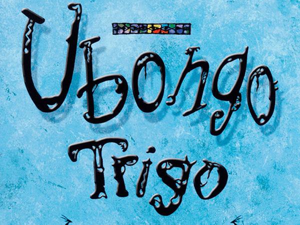 Bild zu Alle Brettspiele-Spiel Ubongo Trigo: Mitbringspiel