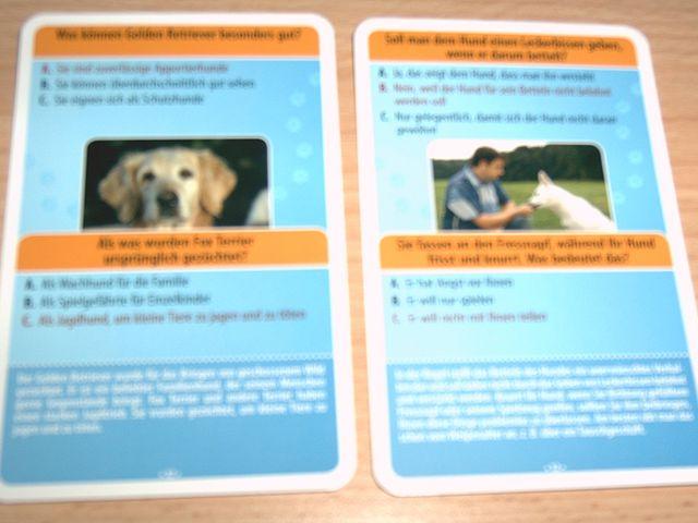 Martin Rütter: Mein Hunde-Quiz Bild 1