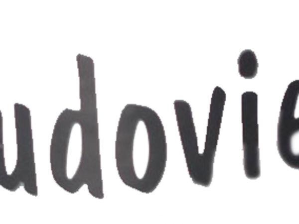 Bild zu Alle Brettspiele-Spiel Ludoviel