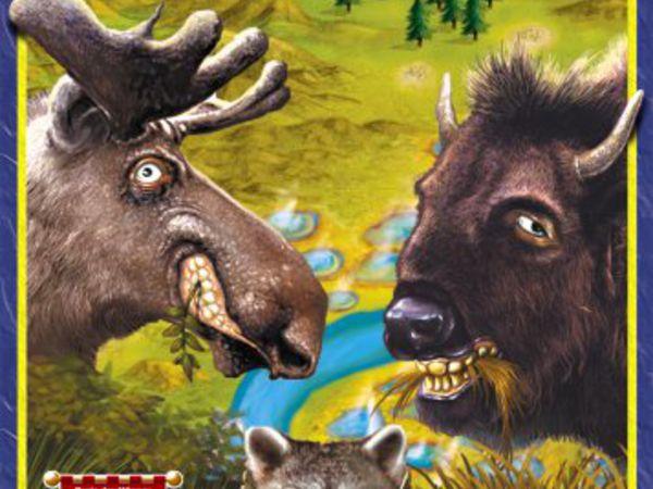 Bild zu Alle Brettspiele-Spiel Yellowstone Park