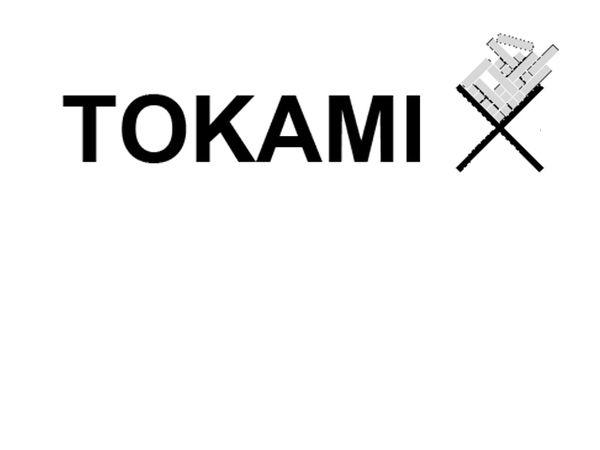 Bild zu Alle Brettspiele-Spiel Tokami