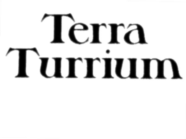 Bild zu Alle Brettspiele-Spiel Terra Turrium