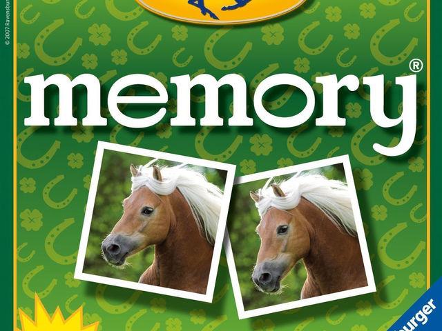 Pferde Memory Bild 1