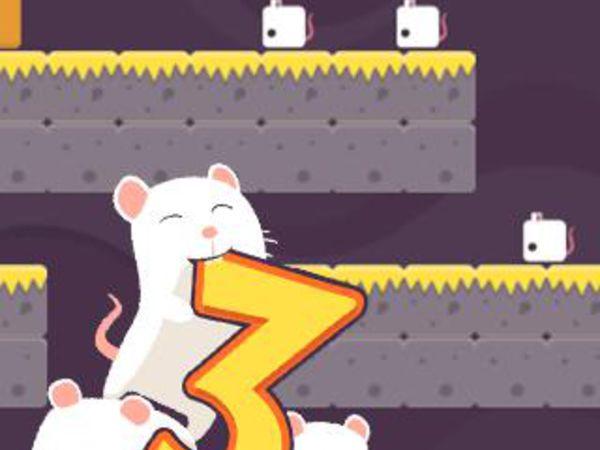Bild zu Action-Spiel 3 Mäuse
