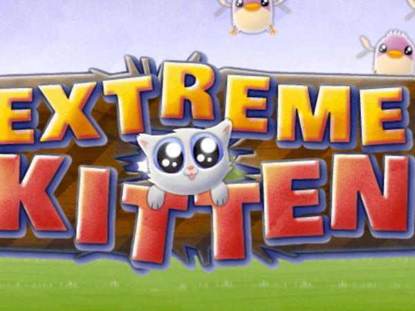 Bild zu Action-Spiel Katzensprung