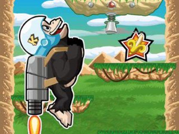 Bild zu Geschick-Spiel Kiba & Kumba: High Jump