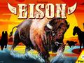 Bison Bild 1