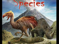 Dominant Species Bild 1