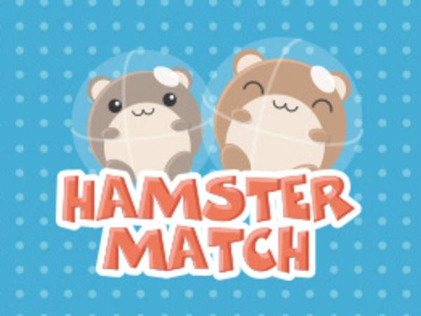 Bild zu Geschick-Spiel Hamster Match