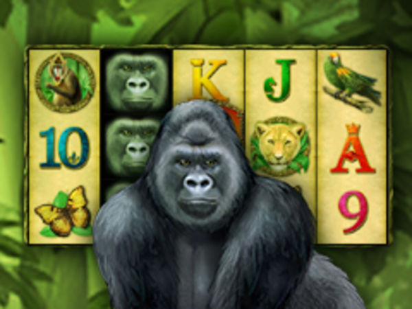Bild zu Jackpot-Spiel King of the Jungle