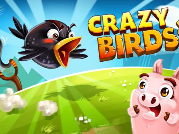Bild zu Action-Spiel Crazy Birds 2